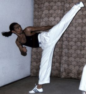 Benefícios gerados pelo Tae Kwon Do e outras artes marciais 02