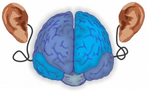 O cérebro e a audição - As principais ferramentas dos DJs e dos produtores musicais