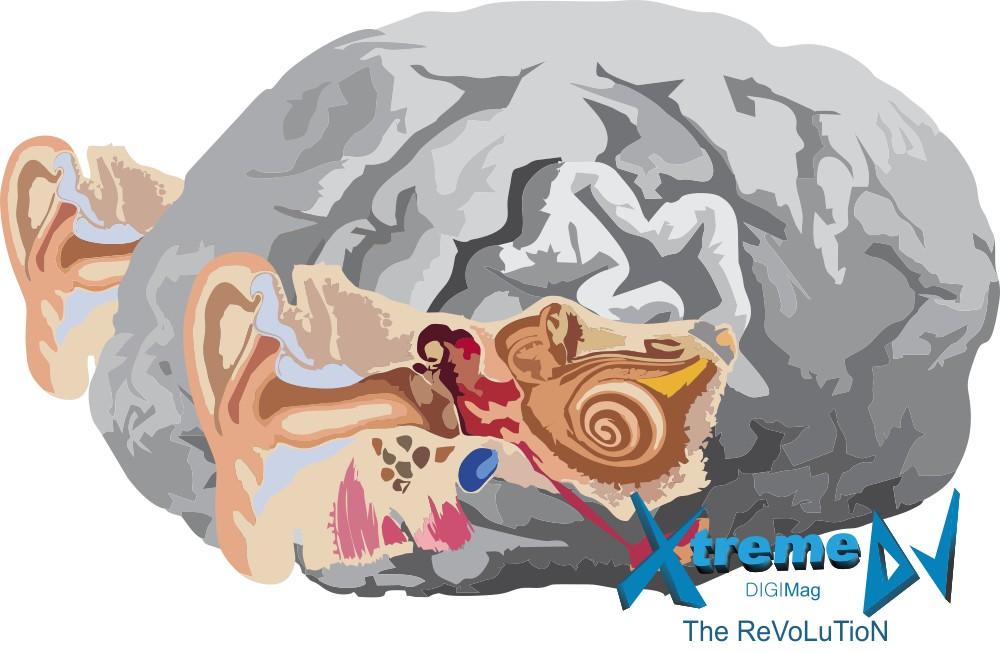O cérebro e a audição, as verdadeiras ferramentas dos DJs