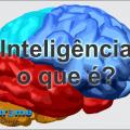O que é inteligência? Para se tornar mais inteligente se faz necessário saber o que é realmente inteligência, mesmo que de forma básica.