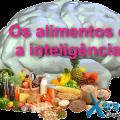 Os alimentos e as habilidades mentais / inteligência